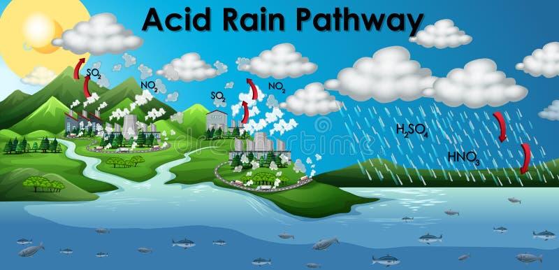 Diagram showing acid rain pathway stock photos