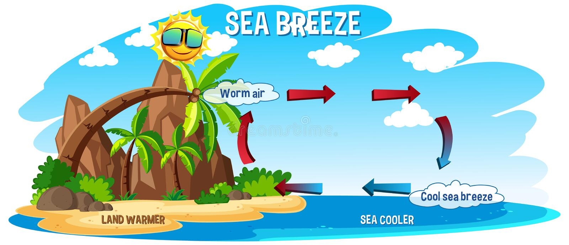Diagram showing circulation of sea breeze. Illustration stock illustration