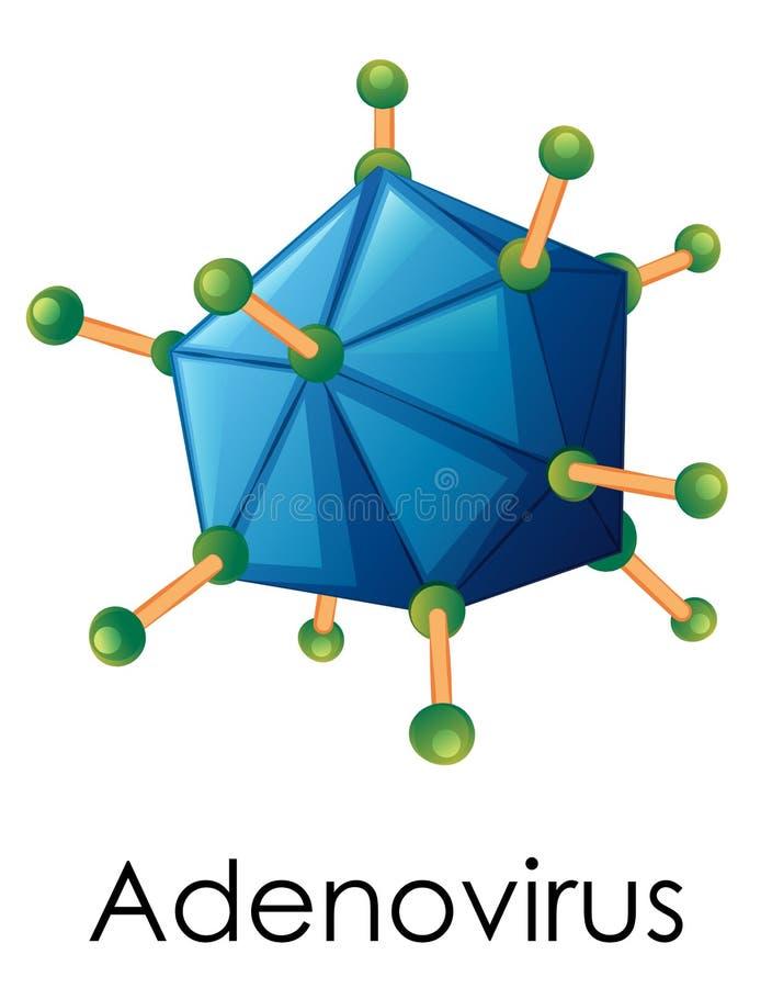 Diagram showing structure of adenovirus. Illustration stock illustration