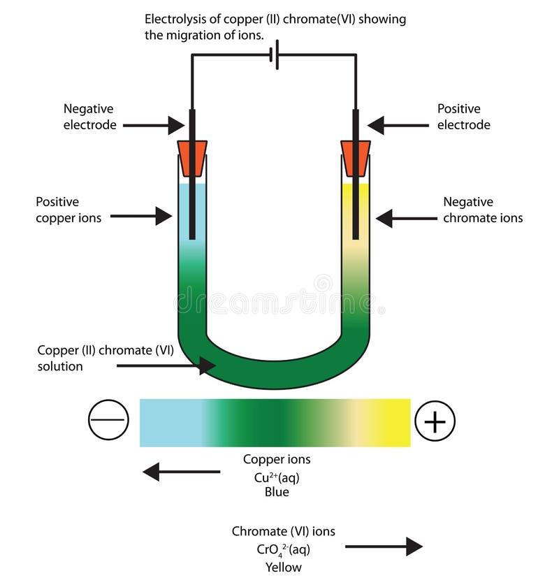 Diagram van de elektrolyse van koper II die chromaat VI zaaien vector illustratie