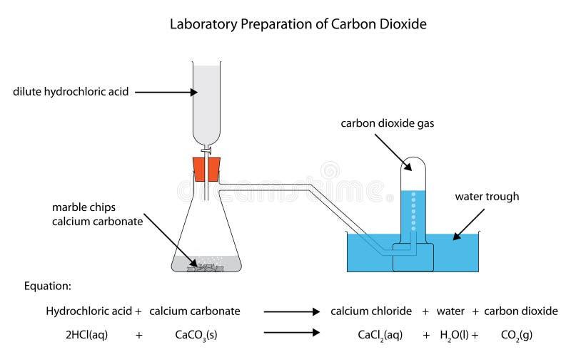 Diagram van de laboratoriumvoorbereiding van kooldioxide stock illustratie
