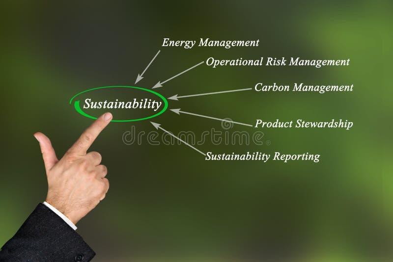 Diagram van duurzaamheid stock afbeelding