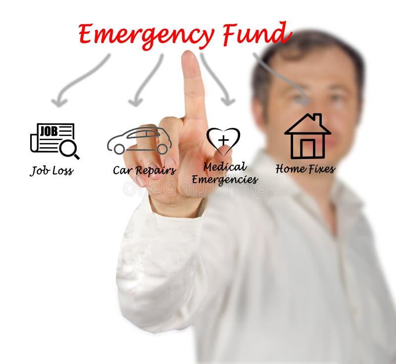 Diagram van Noodsituatiefonds royalty-vrije stock afbeelding