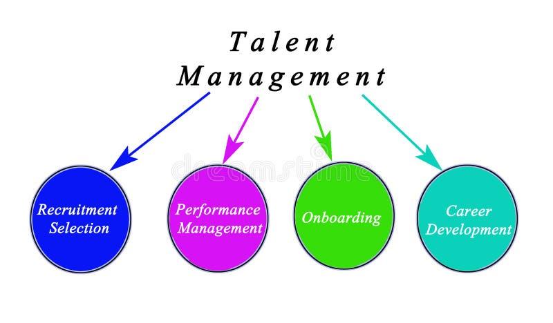 Diagram van Talentenbeheer stock afbeelding