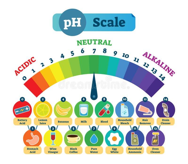 Diagrama ácido del ejemplo del vector de la escala del pH con ejemplos ácidos, neutrales y alcalinos stock de ilustración