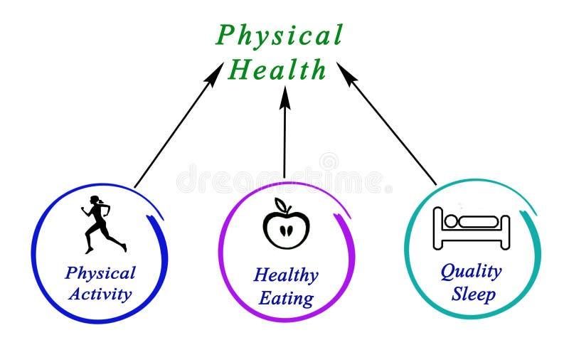 Diagrama da saúde física ilustração stock
