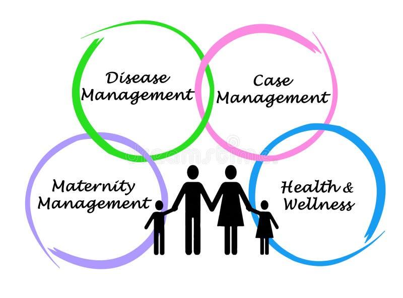 diagrama da solução da gestão em saúde ilustração do vetor