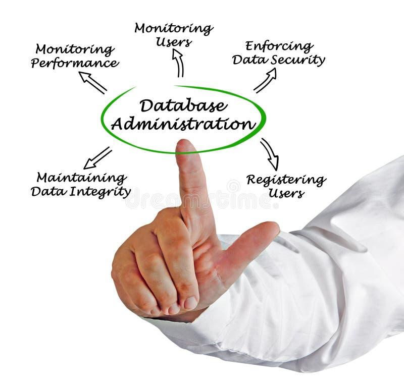 Diagrama de la administración de la base de datos fotografía de archivo libre de regalías