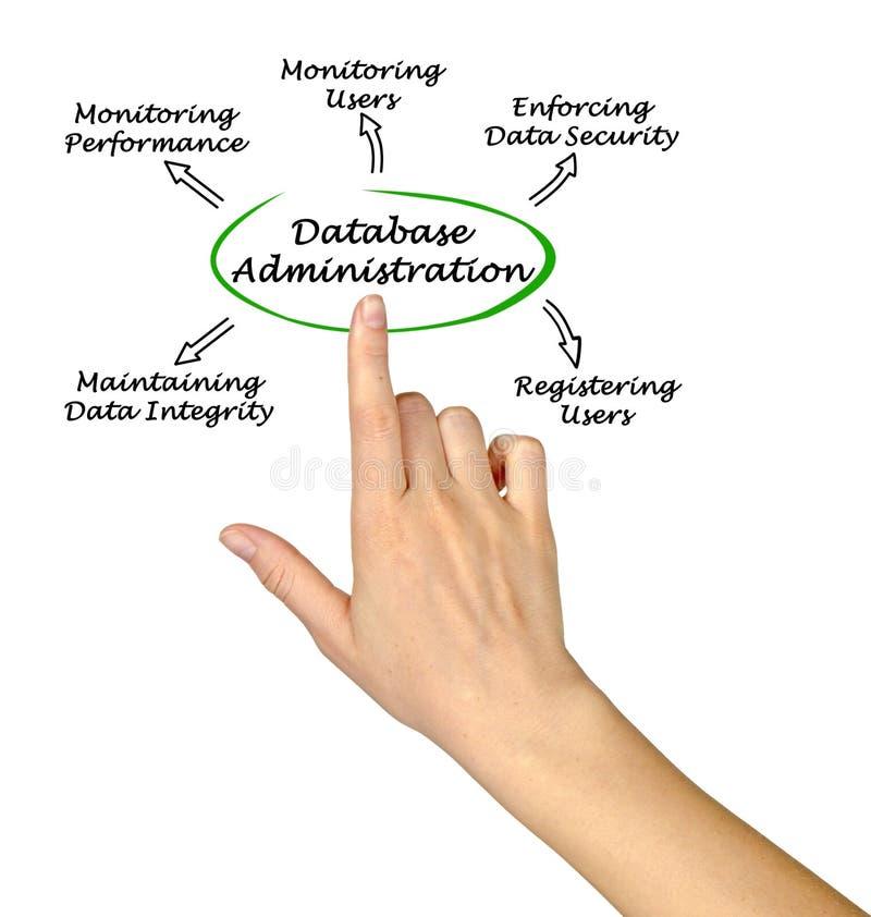 Diagrama de la administración de la base de datos imágenes de archivo libres de regalías