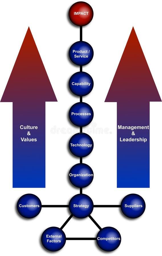 Diagrama de la organización de asunto ilustración del vector
