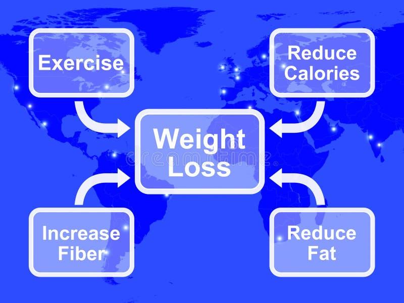 Diagrama de la pérdida de peso que muestra la grasa y calorías del ejercicio de la fibra ilustración del vector