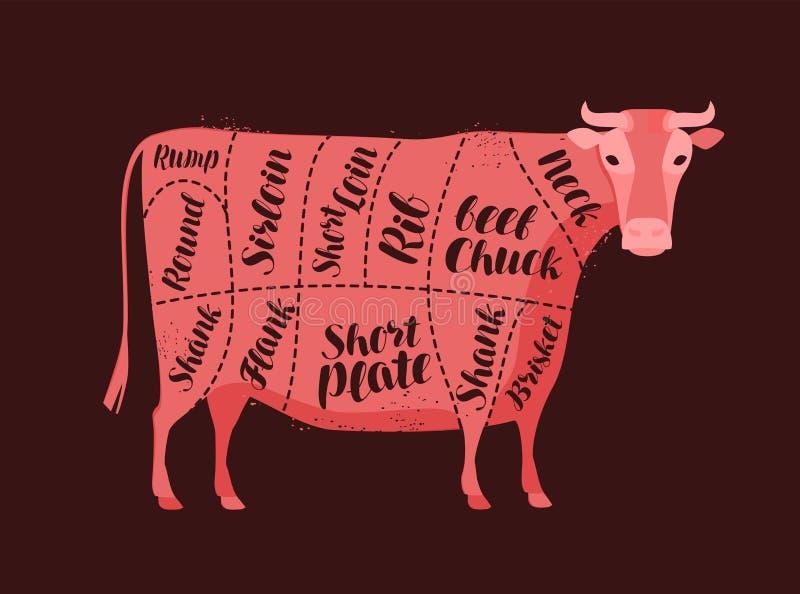 Diagrama de la vaca para el carnicero Carnicer?a, carne de vaca, ejemplo del vector de la carne libre illustration