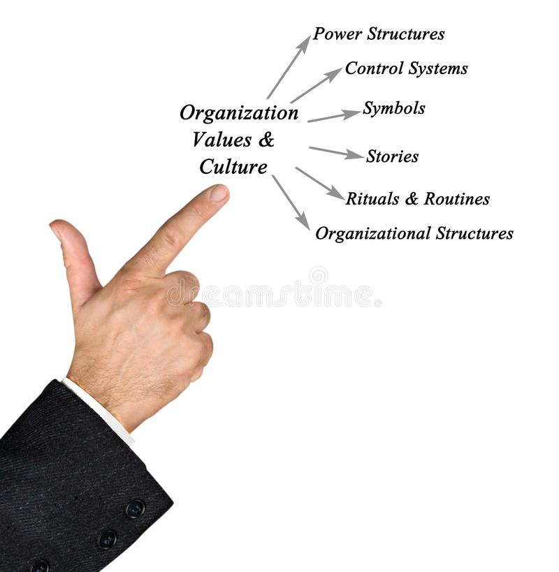 Diagrama de valores & de cultura da organização fotografia de stock royalty free