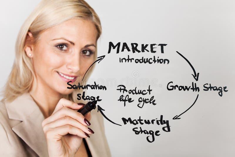 Diagrama del ciclo vital de producto del gráfico de la empresaria fotos de archivo