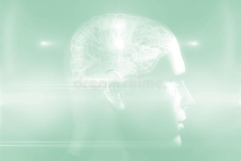 Diagrama do cérebro na cabeça humana 3d ilustração royalty free