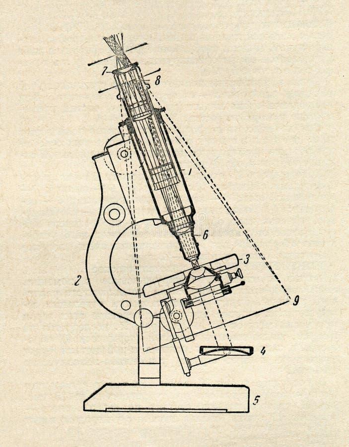 Diagrama do microscópio ilustração royalty free