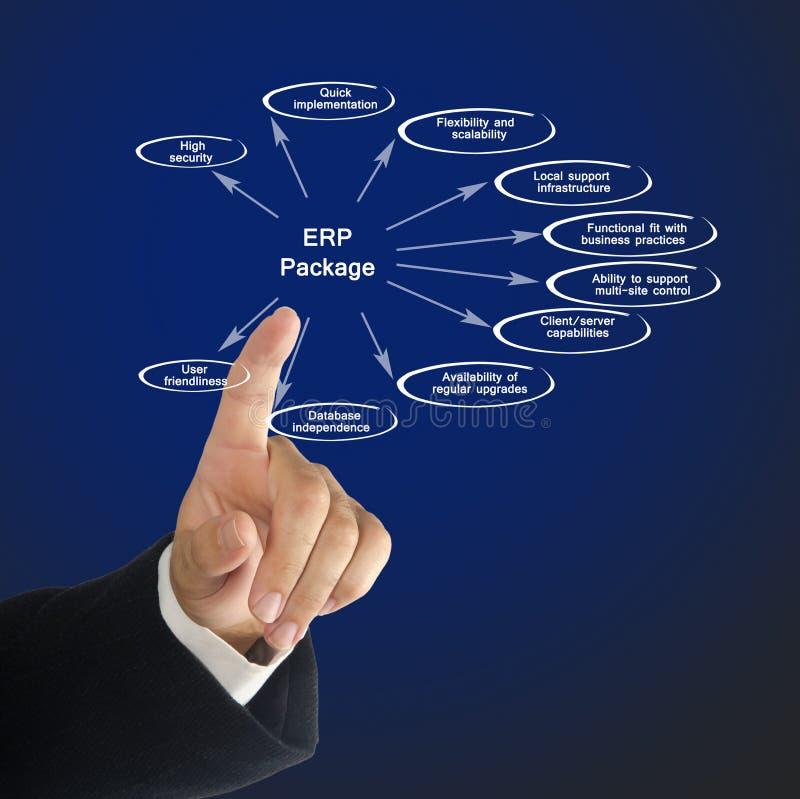 Diagrama do pacote do ERP imagem de stock royalty free