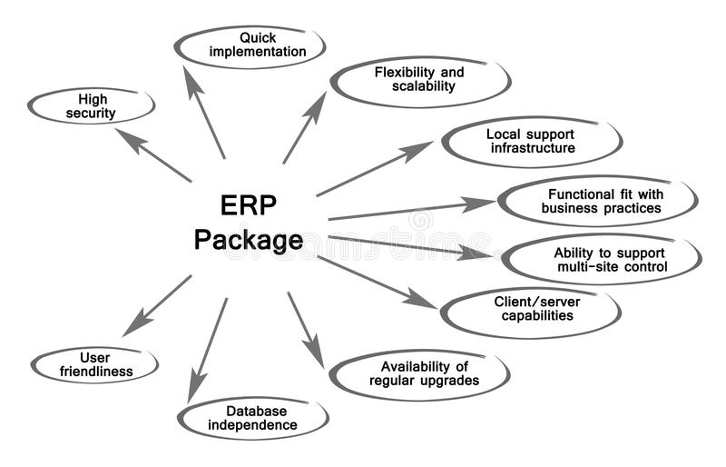 Diagrama do pacote do ERP ilustração royalty free