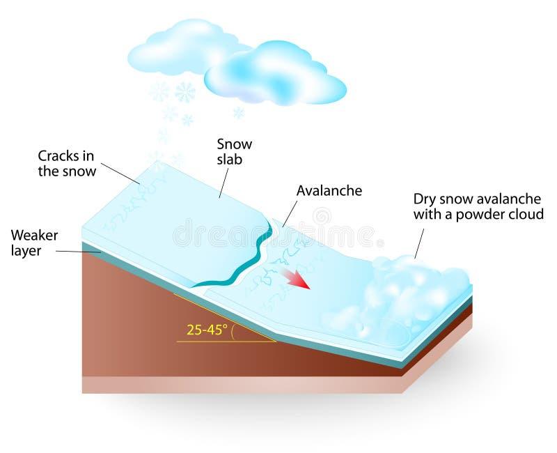 Diagrama do vetor da avalancha da neve ilustração do vetor