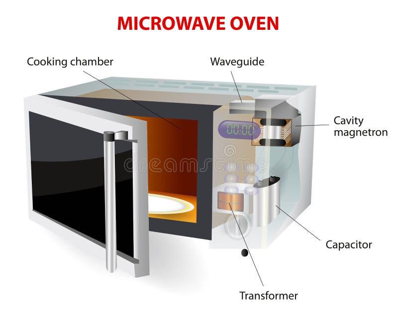 Diagrama do vetor do forno microondas ilustração royalty free