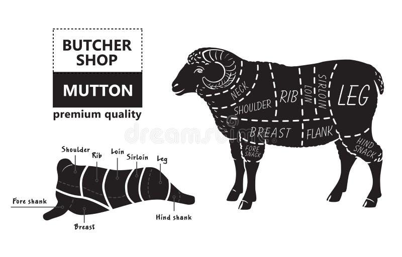 Diagrama dos cortes do cordeiro ou da carne de carneiro Carniceiro Shop ilustração stock