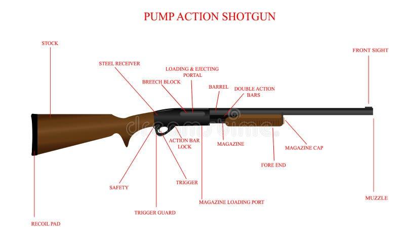 Diagrama etiquetado de la escopeta ilustración del vector