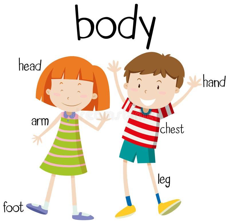 Diagrama humano de las partes del cuerpo ilustración del vector