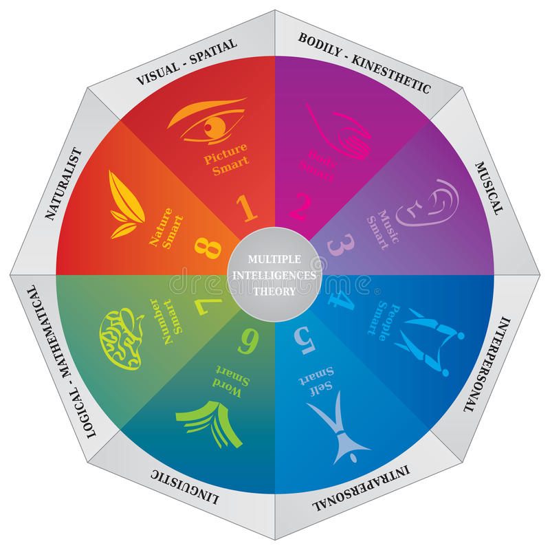 Diagrama múltiplo da teoria das inteligências de Gardners - roda - treinando a ferramenta ilustração royalty free