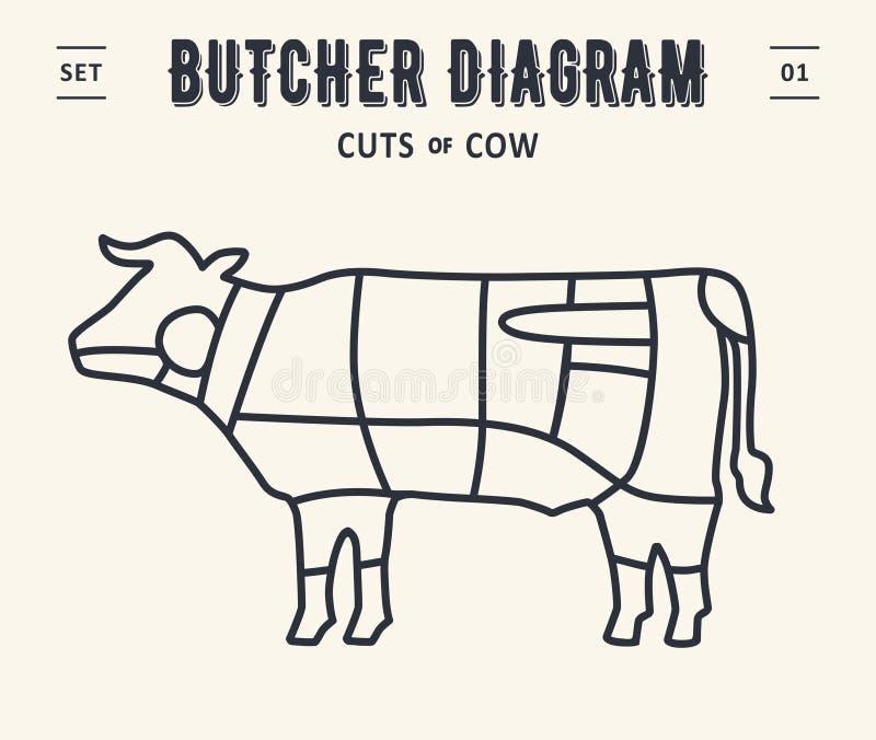 Diagrama y esquema - carne de vaca, vaca del carnicero ilustración del vector