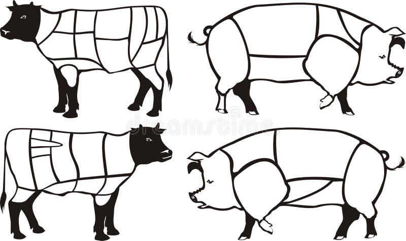 Diagramas del cerdo y de la carne de vaca stock de ilustración