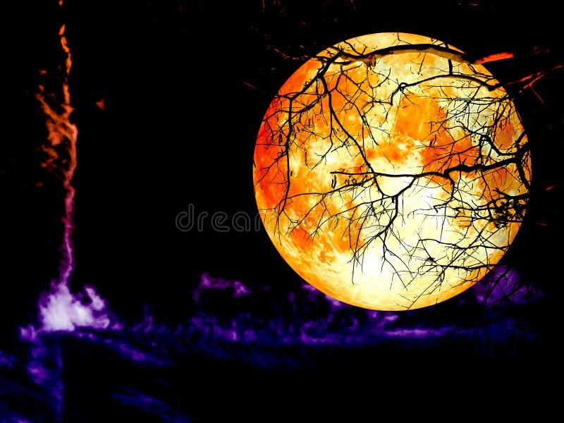 Diagramm auf dem der Mondrückseite des vollen Bluts des bewölkten Himmels trockenen Baum lizenzfreie abbildung