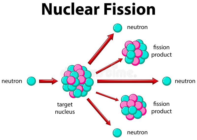 Diagramm, das Kernspaltung zeigt stock abbildung