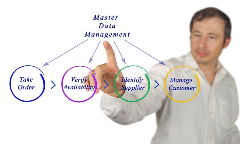 Diagramm von Master Data Management lizenzfreies stockfoto