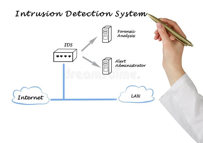Diagramma del sistema di rilevamento di intrusione fotografia stock