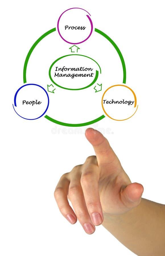 Diagramma della gestione di informazioni immagini stock