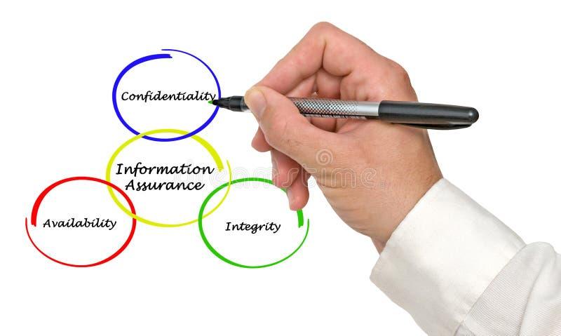 Diagramma di assicurazione di informazioni immagine stock