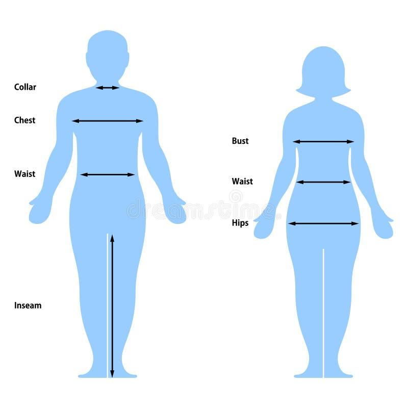 Diagramma di formato dei vestiti royalty illustrazione gratis