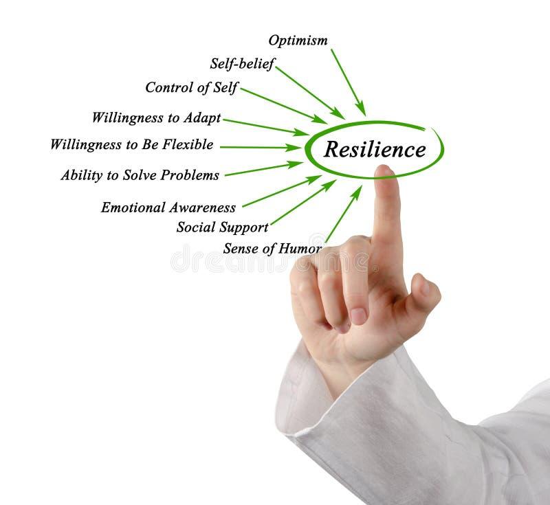 Diagramma di resilienza immagini stock