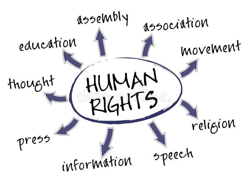 Diagramme de droits de l'homme illustration libre de droits