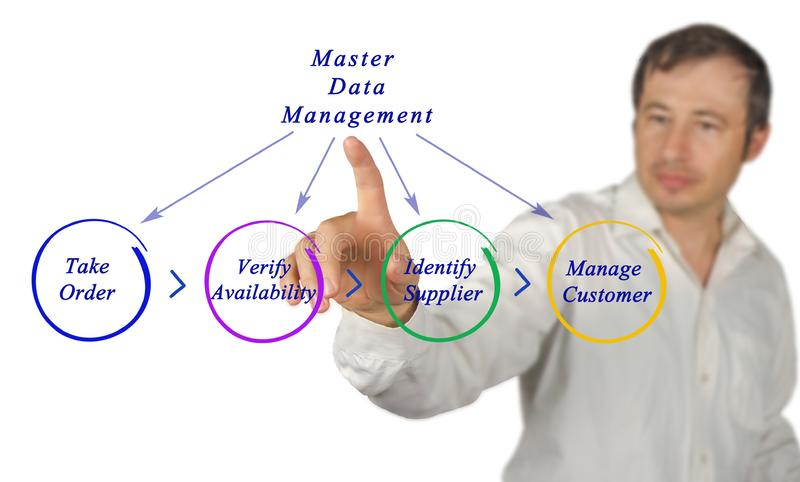 Diagramme de Master Data Management photo libre de droits