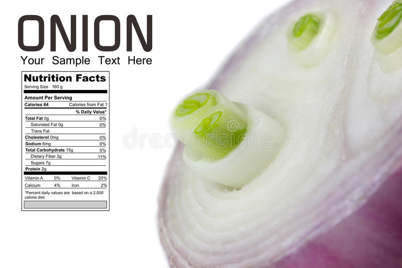 Diagramme de nutrition d'oignon photos stock