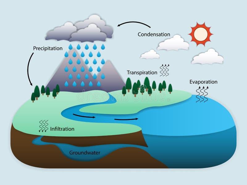 Diagramme du cycle de l'eau dans la nature illustration de vecteur