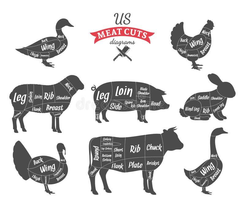 Diagrammi americani dei tagli di carne di (US) illustrazione di stock