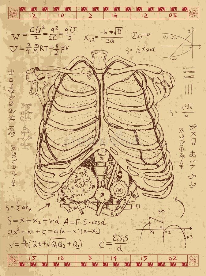 Diagramuppsättning med den mänskliga anatomibröstkorgen och steampunkmekanism i stöd stock illustrationer