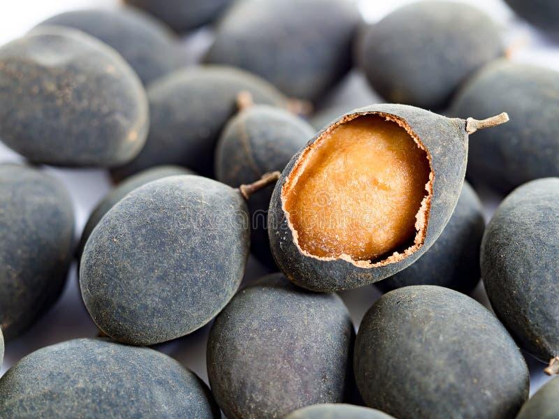 Dialium cochinchinense of het fruit van de fluweeltamarinde Lokaal fruit in Zuidelijk van Thailand Zuur aroma stock afbeelding