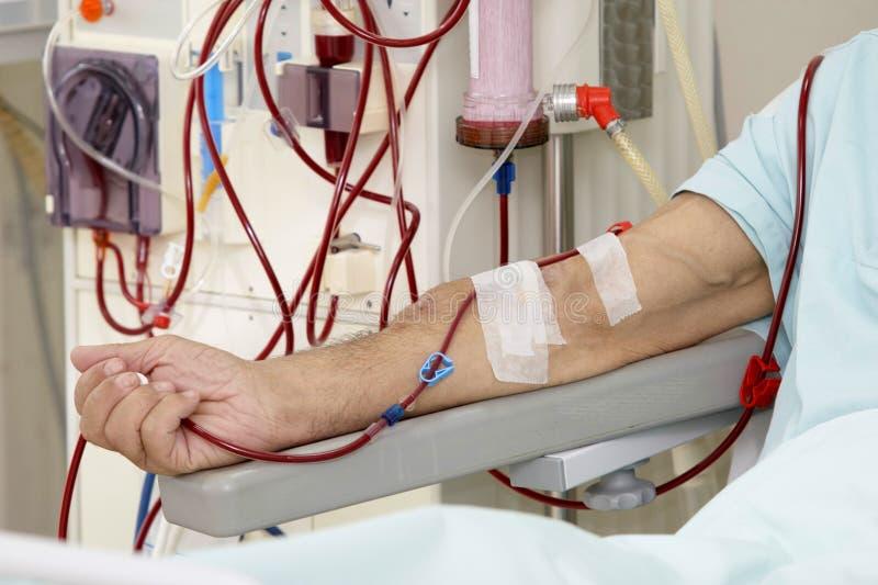 Dialysis 2 royalty free stock photo