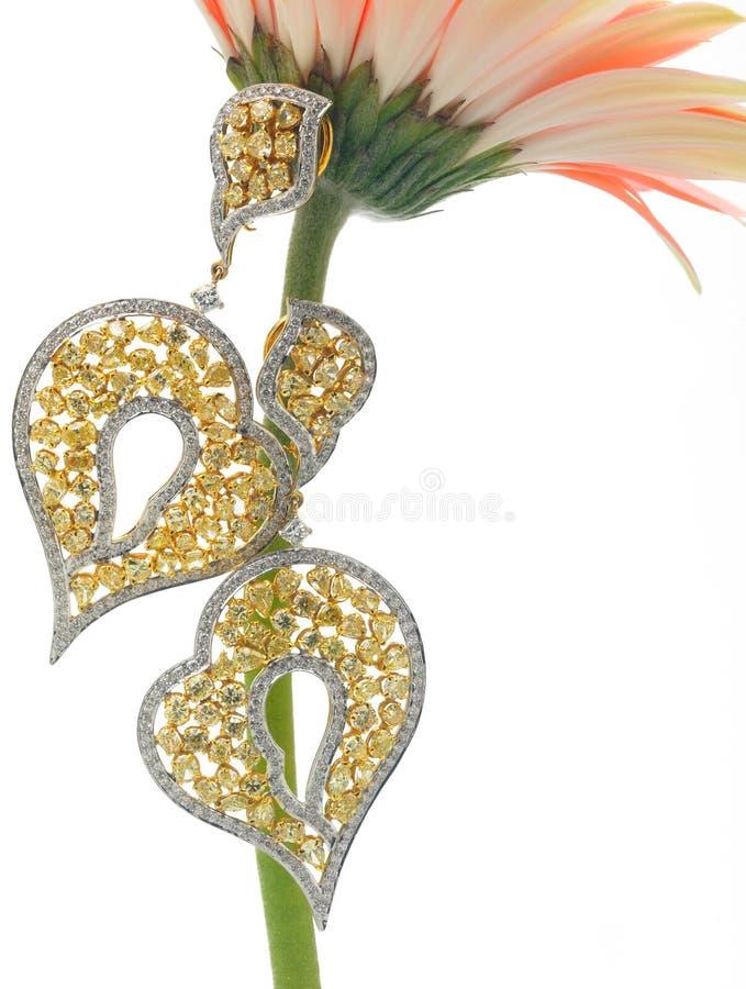 diamantörhängen royaltyfria bilder