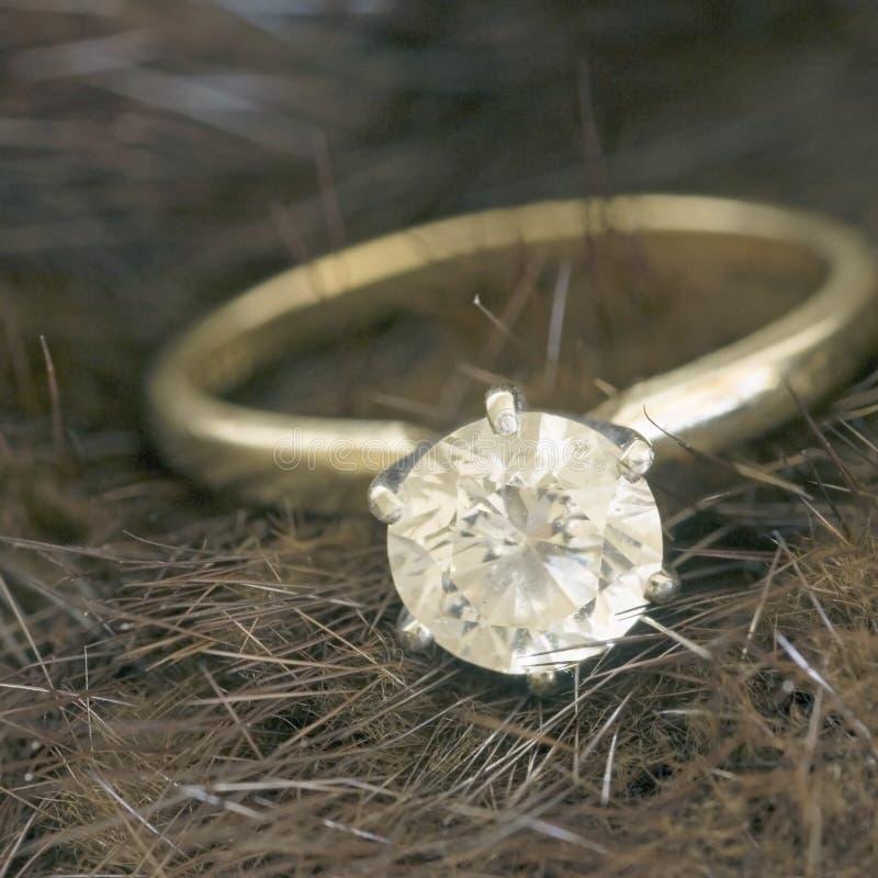 Diamante del solitaire e del visone quadrato fotografia stock
