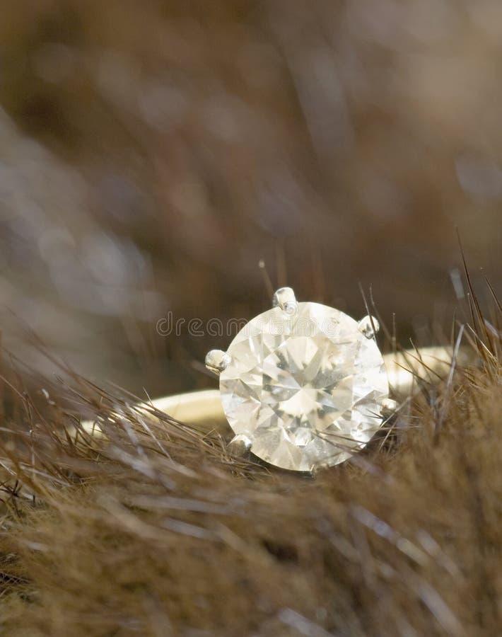 Diamante e visone del Solitaire immagine stock libera da diritti