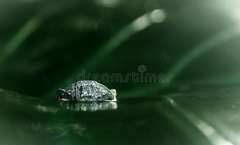 Diamantes do elefante imagem de stock royalty free